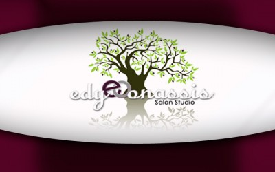 Edy Onassis Salon Studio's Ebony Cleveland Talks Color
